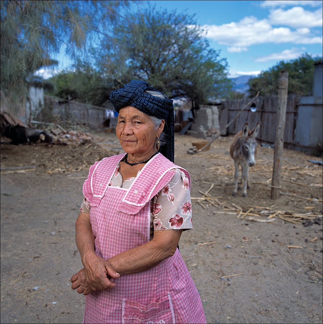 Angelina, Zapotec Women of Oaxaca