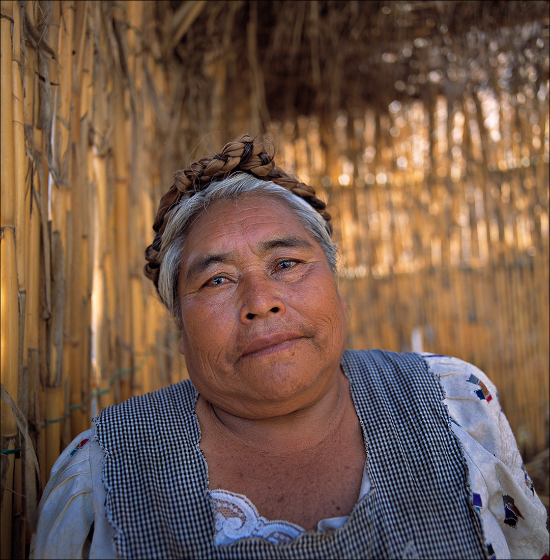 elodia, Zapotec Women of Oaxaca